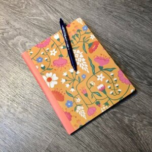 dagbok, insiktsbok, skrivbok